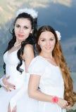 Deux belles mariées photographie stock