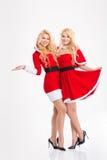 Deux belles soeurs heureuses jumelle étreindre dans des costumes du père noël Photographie stock