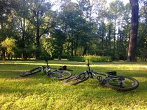 Deux bicyclettes se trouvent sur l'herbe verte sur le pré dans le p photographie stock libre de droits