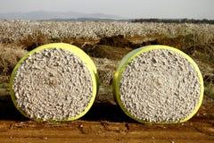 Deux blocs de coton Image libre de droits