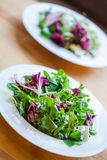 Deux bols de salade délicieux fraîche Photographie stock