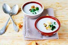 Deux bols de soupe à champignons parfumée Images stock