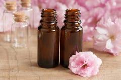 Deux bouteilles d'huile essentielle, avec les fleurs de cerisier japonaises roses à l'arrière-plan images libres de droits