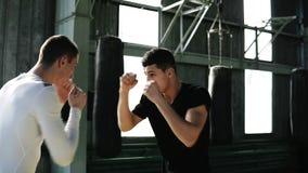 Deux boxeurs habilement établir des poinçons Lancez à partir des coups protégeant le visage Formation de boxe ensemble dans le st clips vidéos