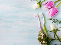 Deux brosses à dents en pastel avec des herbes de fleurs Couleurs de source Photographie stock libre de droits