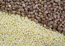 Deux céréales sarrasin et millet Photographie stock libre de droits