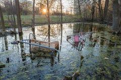 Deux caddies jetés dans l'eau entre les arbres Photos libres de droits