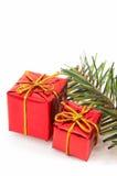 Deux cadeaux de Noël, arbre vert sur le fond blanc. Photo libre de droits