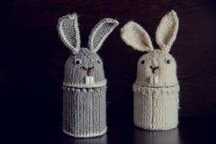 Deux cadeaux tricotés par lapin de Pâques pour les vacances Photographie stock libre de droits