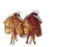 Deux camarades de cailles Image libre de droits