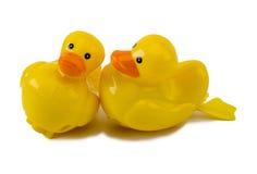 Deux canards en plastique de remontage d'isolement sur le blanc Photo libre de droits