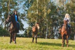 Deux cavaliers féminins avec les chevaux et le poulain bruns de race entre eux Photos libres de droits