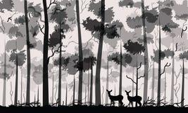 Deux cerfs communs à la forêt énorme illustration de vecteur
