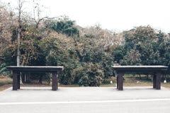 Deux chaises vides se tenant en parc, Photos stock
