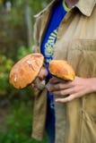 Deux champignons dans des mains de filles recherche des champignons Photo stock