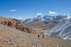 Deux chasseurs descendent la montagne dans la vallée photo libre de droits