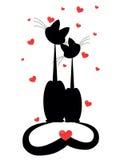 Deux chats dans l'amour Photos stock