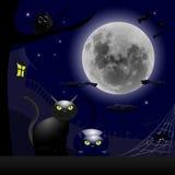 Deux chats et un thème de Halloween de pleine lune Photographie stock