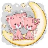 Deux chats sur la lune Photographie stock libre de droits