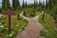 Deux chemins avec le signe blanc Photo stock