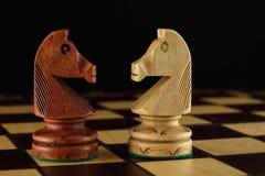 Deux chevaliers d'échecs Image stock