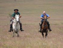 Deux chevaux d'équitation d'hommes à la vitesse Photographie stock