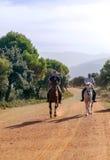 Deux chevaux d'équitation d'hommes Photographie stock