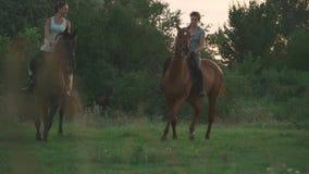Deux chevaux de tour de filles clips vidéos