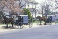 Deux chevaux et chariots Image stock