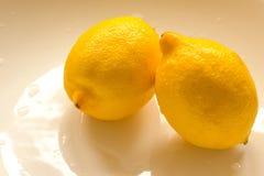Deux citrons à un arrière-plan blanc de cuvette avec l'espace de copie Image stock