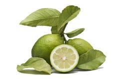 Deux citrons et une moitié. Images libres de droits
