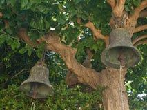 Deux cloches antiques sur un arbre Images libres de droits