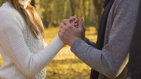 Deux coeurs affectueux se chauffant le jour, la tendresse et l'amour frais d'automne clips vidéos