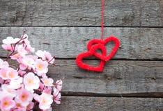 Deux coeurs avec des fleurs de cerisier de ressort fleurit sur le fond en bois Image stock