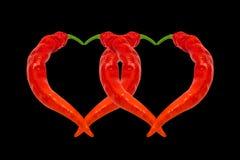 Deux coeurs composés de poivrons de piment d'un rouge ardent Photos libres de droits
