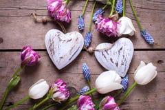 Deux coeurs décoratifs et tulipes lumineuses fleurit sur âgé texturisé Photos stock