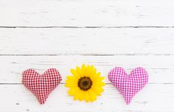 Deux coeurs d'amour avec la fleur jaune se développent sur le fond blanc avec l'espace de copie Images libres de droits