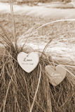 Deux coeurs d'amour de sépia sur les dunes herbeuses Photographie stock libre de droits