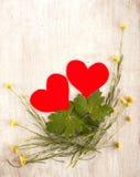 Deux coeurs dans le nid avec des usines et des feuilles Image libre de droits