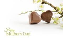 Deux coeurs de chocolat et branches fleurissantes avec l'ombre Photographie stock