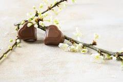 Deux coeurs de chocolat et une fleur s'embranchent pour le ` s de valentine ou le mot Photographie stock