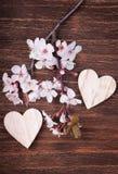 Deux coeurs en bois avec des fleurs de fleurs de cerisier de ressort Image libre de droits