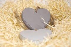 Deux coeurs en bois dans le nid Photographie stock