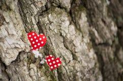 Deux coeurs rouges Photos libres de droits