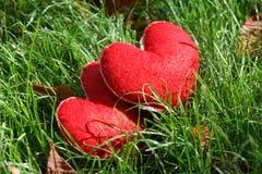 Deux coeurs rouges sur l'herbe en parc Heureux, amour, idée de jour de valentines, symbole, concept Image libre de droits