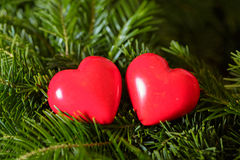Deux coeurs rouges sur le fond des branches de sapin Jour de Valentine Images stock