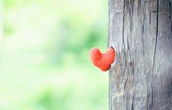 Deux coeurs rouges sur le fond en bois Photo stock