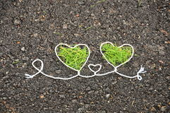 Deux coeurs verts Photos libres de droits