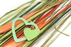 Deux coeurs verts sur des feuilles de brigt Images stock