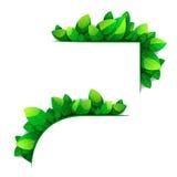 Deux coins des feuilles vertes Image libre de droits